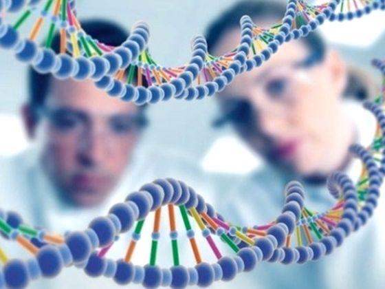 Что такое генетический паспорт и для чего он нужен
