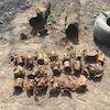 На Сумщині СБУ виявила схованку зі зброєю часів Другої Світової війни