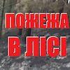 Пожежа у Полошківському Яру (відео)