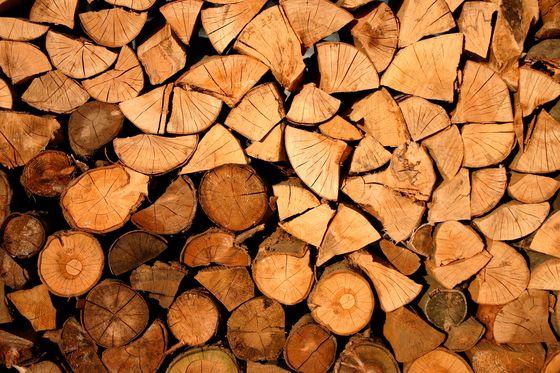 Какие дрова для камина выбрать?
