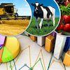 Аграрії Сумщини у першій п'ятірці серед регіонів України