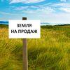 Ринок землі в Україні: озвучено ціни за гектар