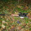 Двоє мешканців Сумщини за вбивство двох благородних оленів отримали тюремний срок